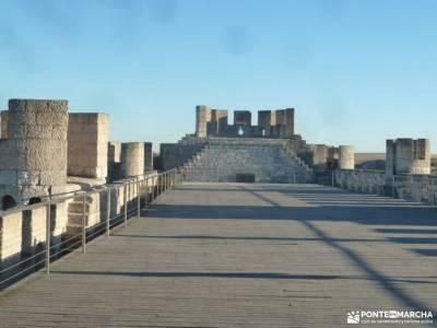 Ribera del Duero,visita enológica-Peñafiel; agencias senderismo madrid fruto del tejo grupos de mo